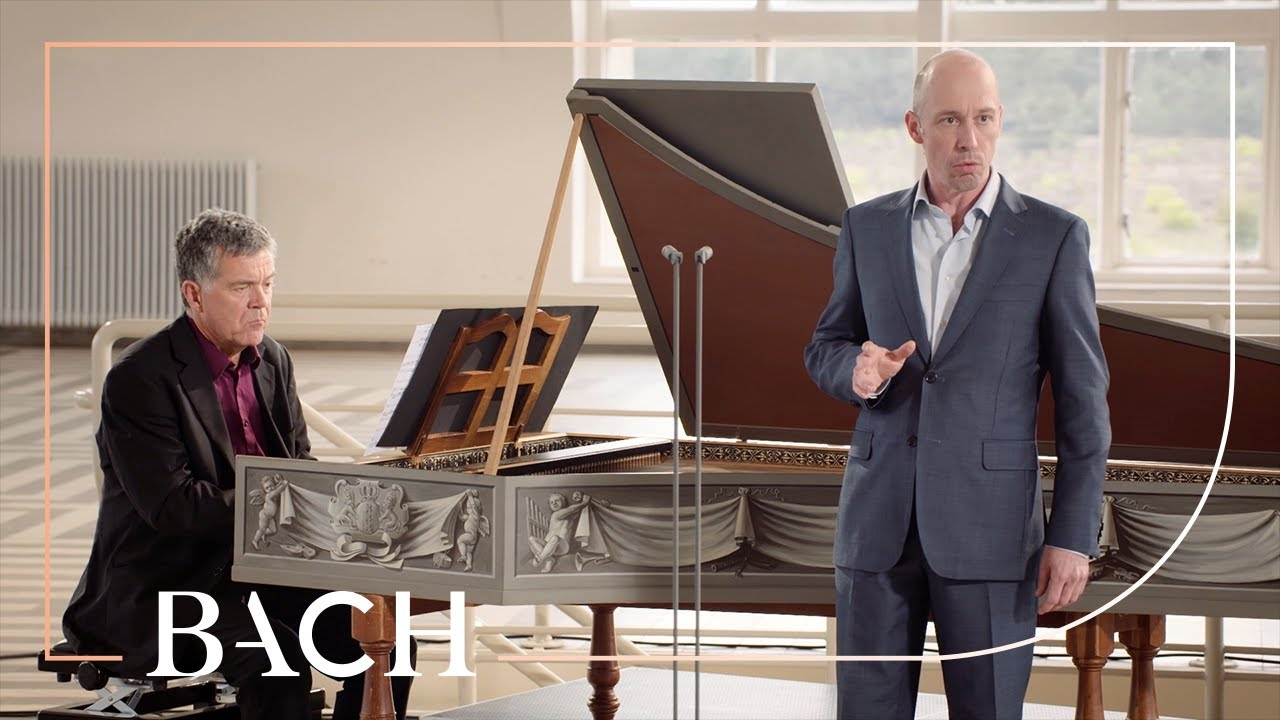 Bach - Amore traditore BWV 203 - Van de Woerd and Henstra   Netherlands Bach Society