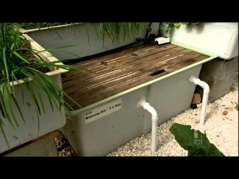 Murray Hallam On Gardening Australia