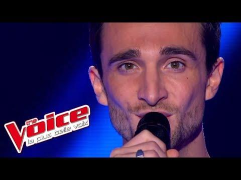 The Voice 2013 | Benjamin Bocconi - Puisque tu pars (Jean-Jacques Goldman) | Blind Audition
