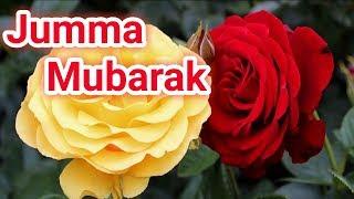 💗💗Jumma mubarak dua whatsapp status/Rabbi-ul-awwal jumma mubarak