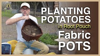 Planting Potatoes In Fabric Pots