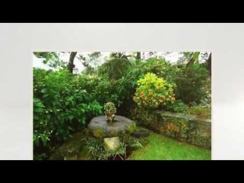 видео: Садовый ландшафтный дизайн своими руками