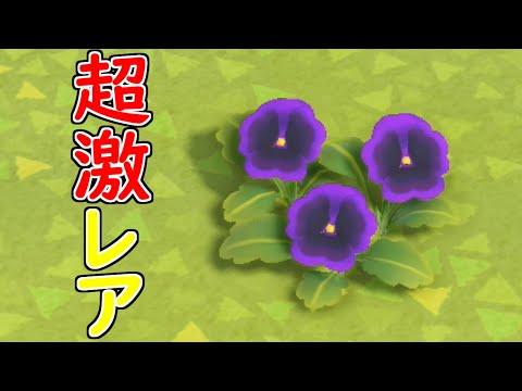 紫のアネモネ あつ森