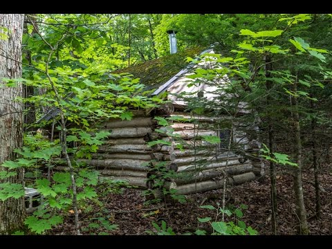 How To Build An Off Grid Log Cabin For Free Youtube