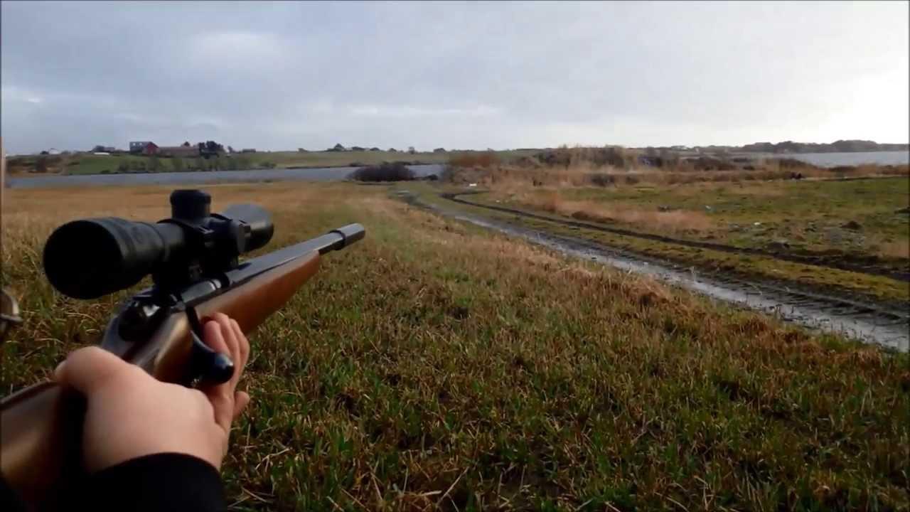 Cz 455 varmint review youtube - Cz 455 Varmint Suppressor