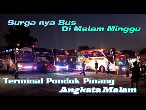 Jam Sibuk Nya Angkatan Malam Terminal Pondok Pinang | Hunting Bis.