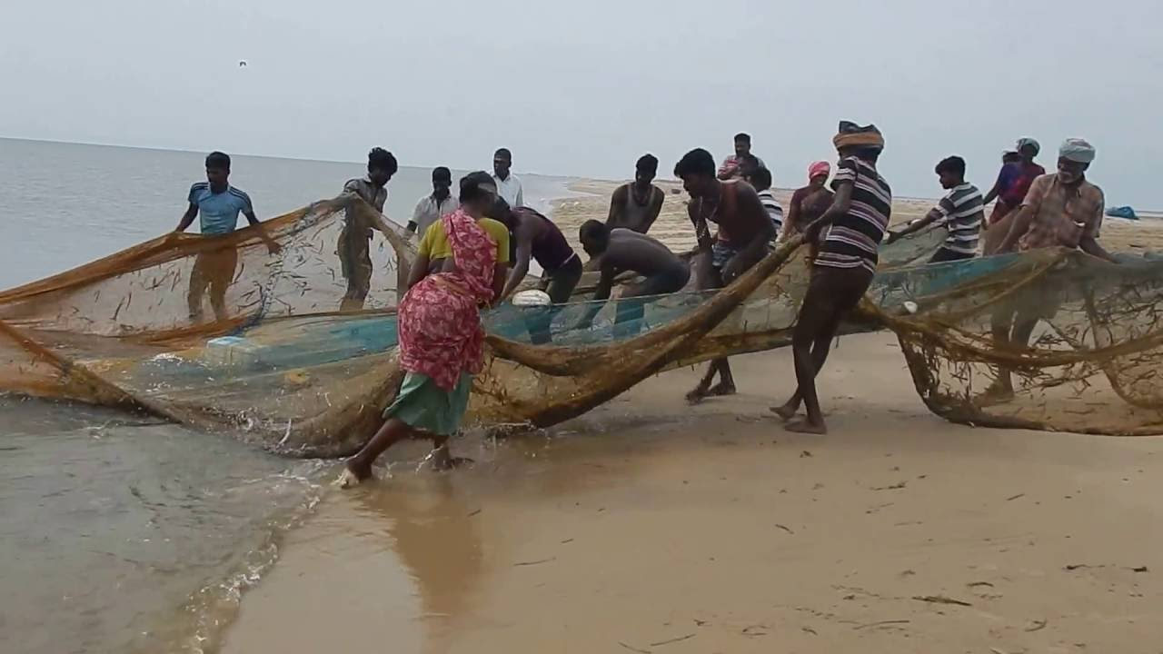 Fishermen and women manoeuvre a shore seine. (Image: YouTube)