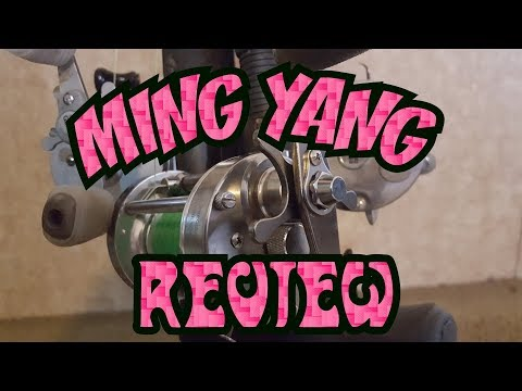 Ming Yang CL60 Fishing Reel 1 Year Update Review