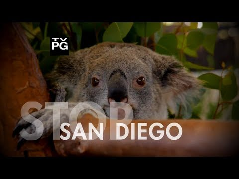 ✈San Diego, California  ►Vacation Travel Guide