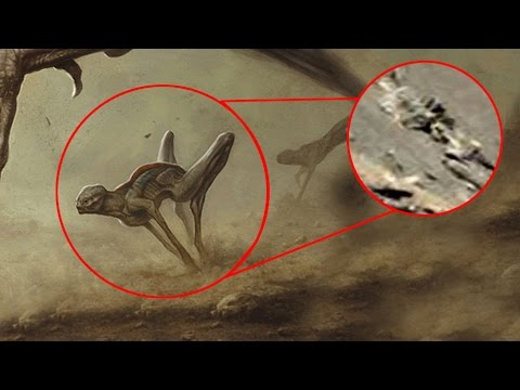 5 Aliens Life Forms on Moon and Mars  Caught By NASA