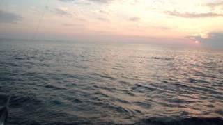 Рыбалка в Абхазии, Черное море(В Абхазии есть, что посмотреть, матушка природа этот край не обидела. А также, море, солнце и, конечно, рыбалка., 2015-09-09T13:53:19.000Z)