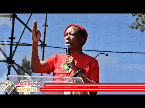 All The Campaign Promises Made By Julius Malema On Human Rights Day