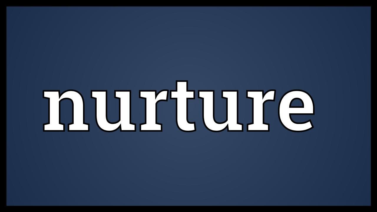 nurture meaning english