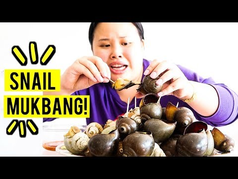 MUKBANG GIANT SNAILS! 먹방 (EATING SHOW!)