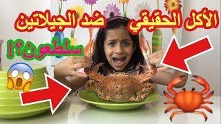 الأكل الحقيقي ضد الجيلاتين سلطعون فرشاة أسنان   real food vs gummy food