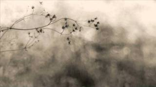 Dakota Suite & Emanuele Errante - A Hymn To Haruki Murakami
