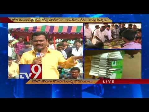 ఏపీలో జోరుగా సాగుతున్న కోడిపందాలు - TV9