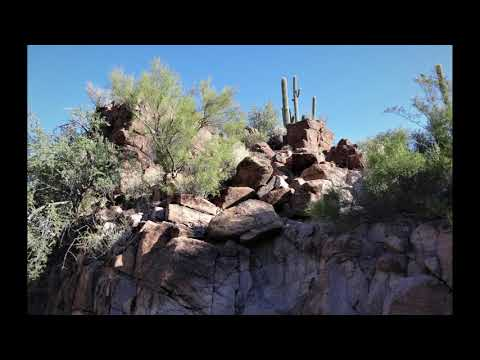 The Petroglyphs at Picture Rocks, Tucson AZ, USA