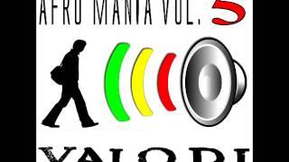 anteprima AFRO MANIA vol. 5 - VALO DJ