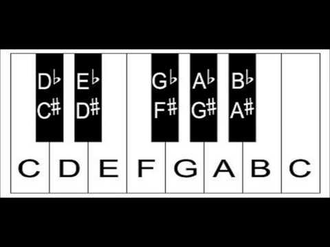 Piano Keys: The Layout Of Keys On The Keyboard