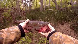Рыбалка на СИМУ и ТАЙМЕНЯ 2021 2 3 июня