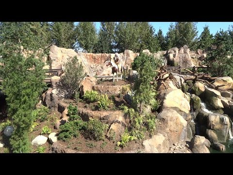 Mark Twain Riverboat returns to Disneyland FULL FIRST RIDE POV 2017 on new Rivers of America
