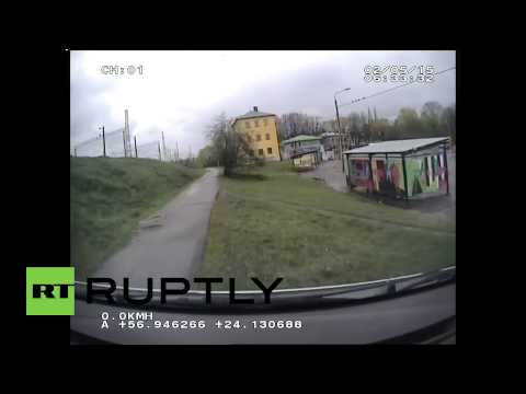 Latvia: Police dashcam captures wild boar chase through streets of Riga