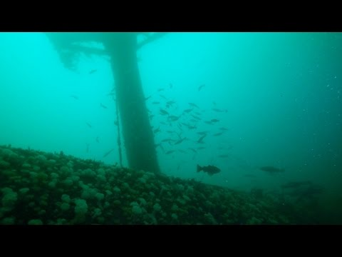 Diving The Sound of Mull - SS Hispania with GoPro Hero4