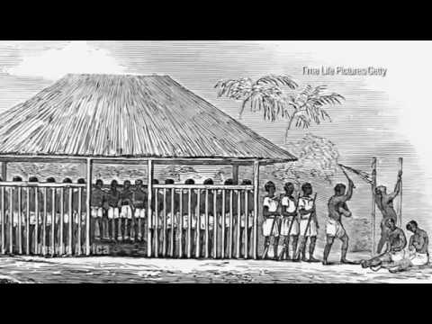 The Gambia How Historic Fort Fought Slavery