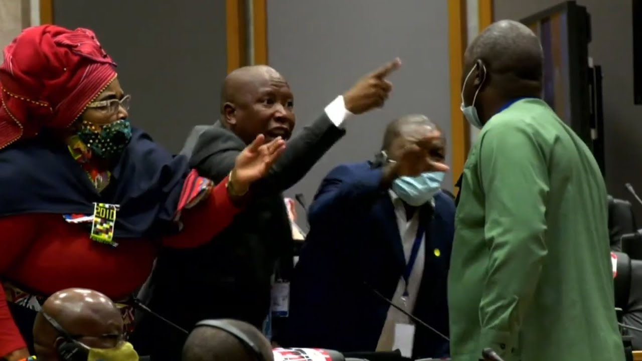 I'll kill you outside' |  Malema in heated exchange at Pan-African parliament sitting