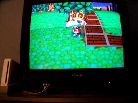 Animal Crossing City Folk - Catching A Jewel Beetle