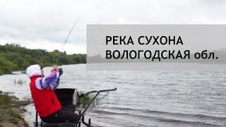 Рыбалка на реке Сухона Вологодская обл