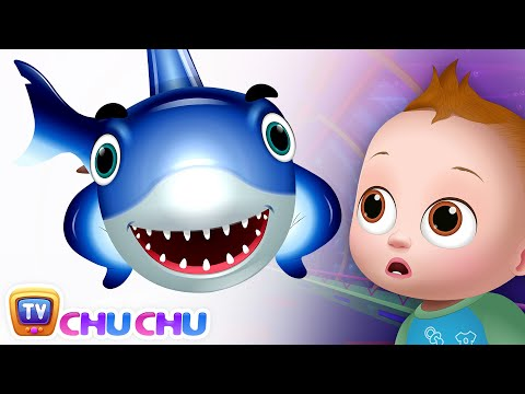 Baby Shark - Great White Shark - Learn Shark Names For Children - ChuChuTV Nursery Rhymes & Songs Mp3