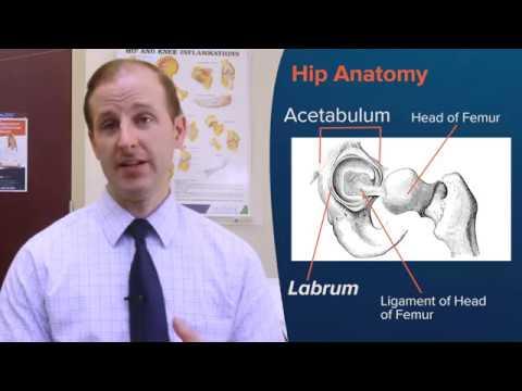 Dr  Michael Merz Orthopaedic Surgeon North Carolina - EmergeOrtho