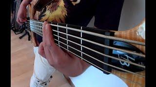 Die Toten Hosen - Testbild [Bass Cover]