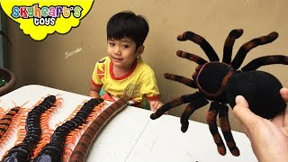 CREEPY SPIDER and Crawling Insect Kids Toys - Giant Scolopendra, Centipede, Snake, spider toys