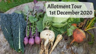 Allotment Tour 1st December 2020