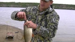 Рыбалка на реке Тура 02.08.2013
