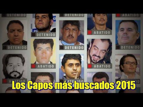 Los Capos Más Buscados 2015 Pgr Youtube