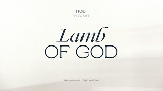 Lamb of God | Asher Intrater