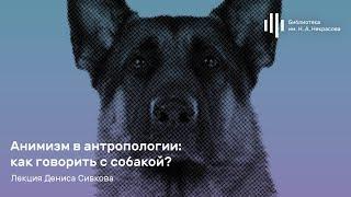 «Анимизм в антропологии: как говорить с собакой?» Лекция Дениса Сивкова