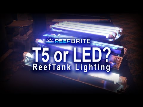 748c6b4e7ce7 Reef Tank lighting