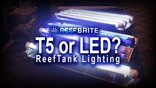 Reef Tank lighting, T5 or LED with REEF BRITE!