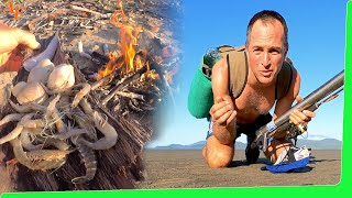 Can I survive on a coastal sand flat? - Solo overnight adventure - Catch and Cook EP.503