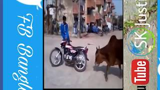 Hot Whatsaupp Funny Videos 2017| Best Whatsapp Funny Videos  | Try Not To Laugh Pk2