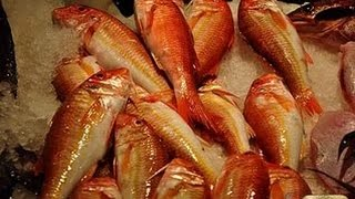 Рыбалка в Абхазия(Рыбалка в Абхазия Подписывайтесь на канал https://www.youtube.com/channel/UCvVj9oqZtzm99sng3BhR2aw?sub_confirmation=1 рыбалка русская ..., 2016-07-08T18:10:27.000Z)