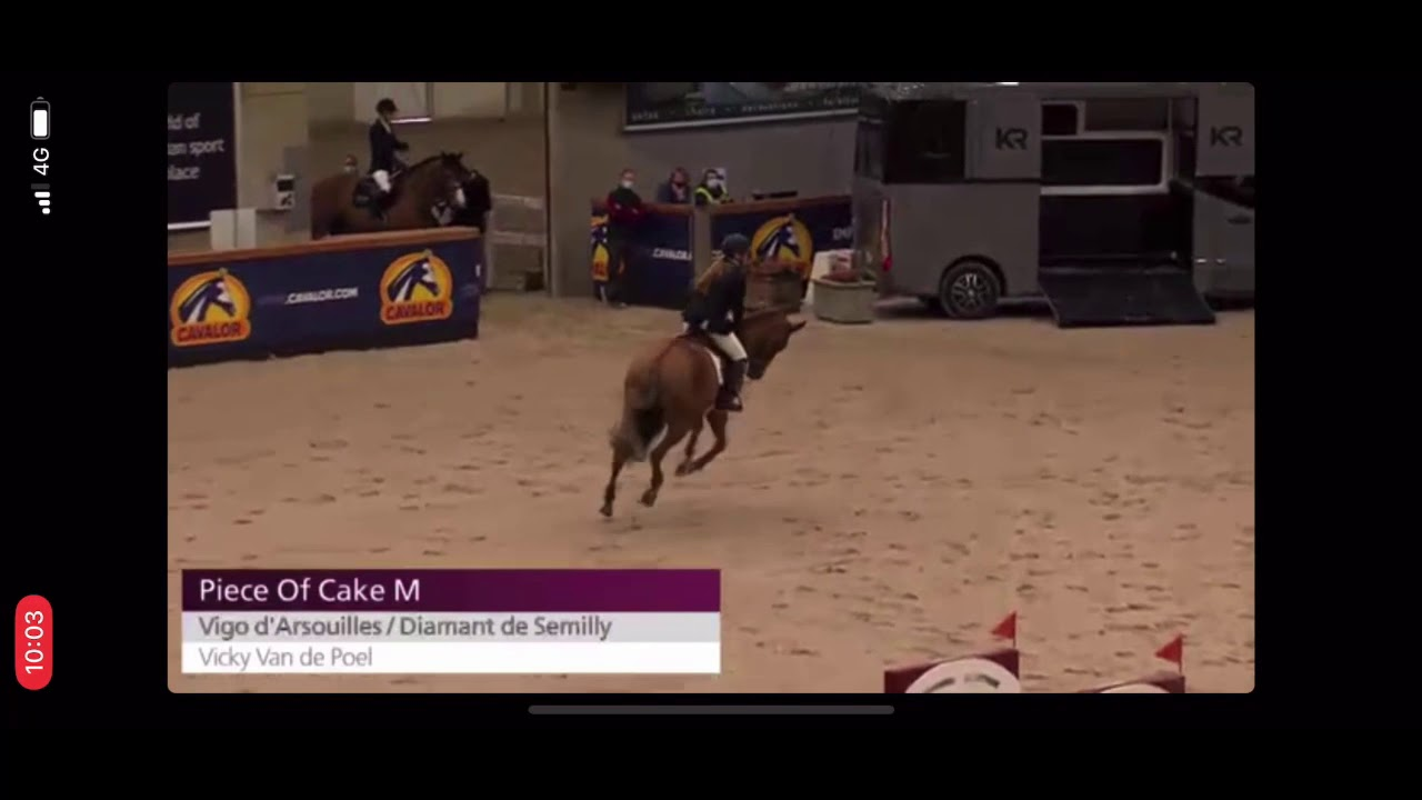 Piece of Cake M - 6yo Stallion Competition 22/2 Sentower Park