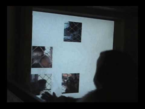 A capuchin matches movies by identity and continuity