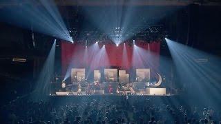 EGO-WRAPPIN'『サイコアナルシス』LIVE