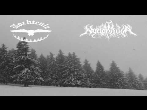 Nachteule / Nyctophilia - Errance Hivernale - Gdzie Noc Jest Najczarniejsza (Split) 2017
